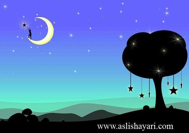 tumse milne ke baad tumhe khona nahi chaahta good night shayari