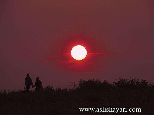 love shayari couple