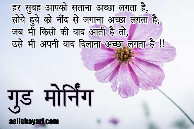 good morning shayari image 2