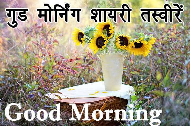 good morning shayari quotes messages collection
