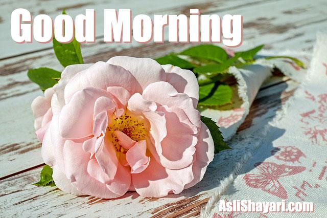 good morning 16