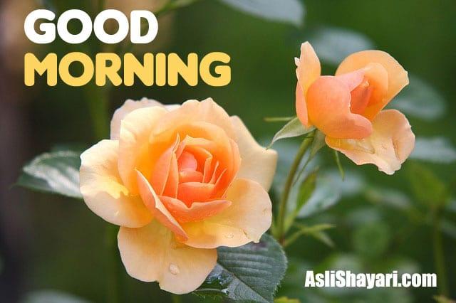 good morning 17