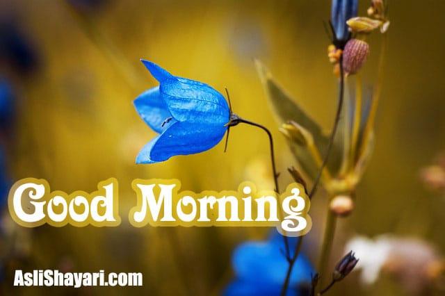 good morning 18