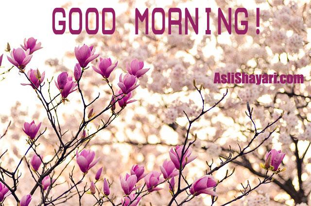 14 Awesome Good Morning Wish Photos Aslishayaricom