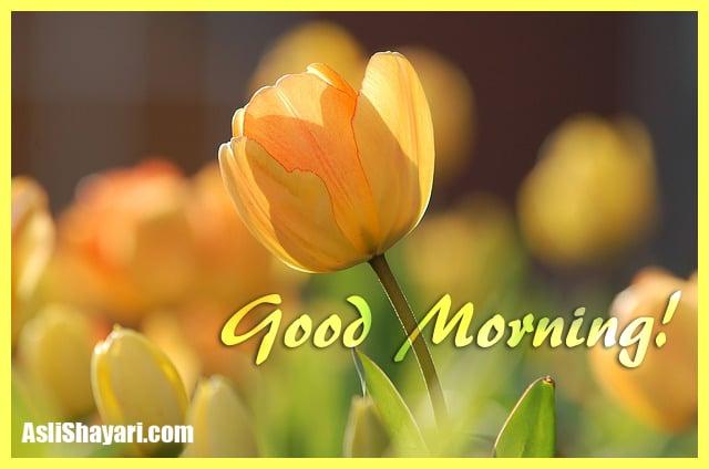 good morning 690320