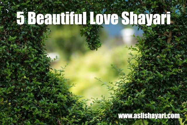 5 beautiful love shayari wallpapers
