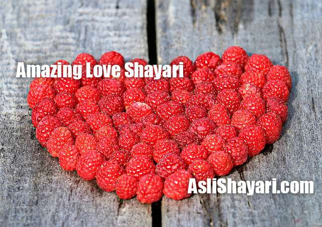 amazing love shayari