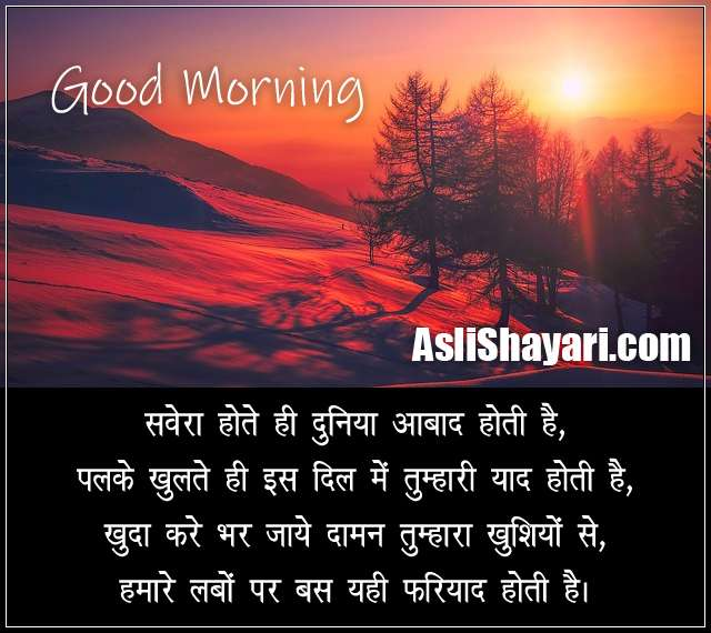 lovely morning shayari wallpaper
