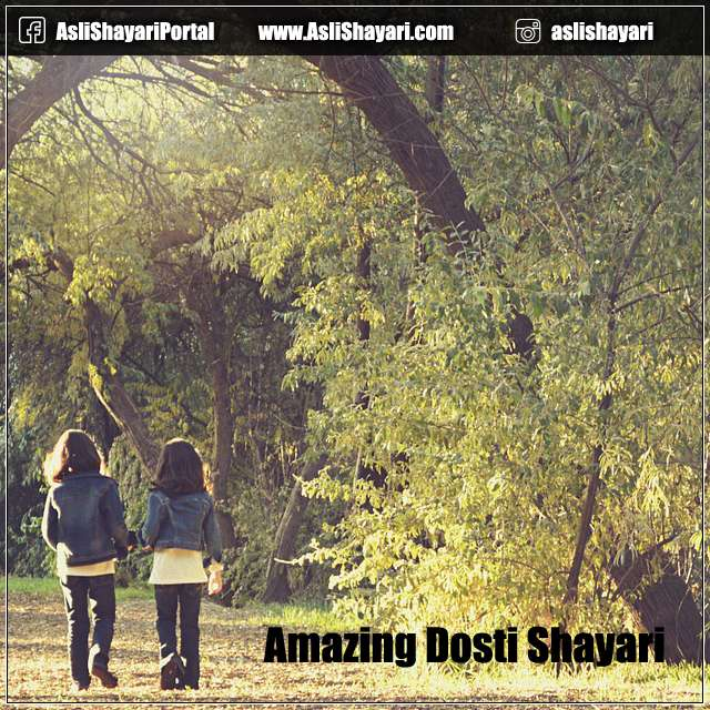 amazing dosti shayari for friends