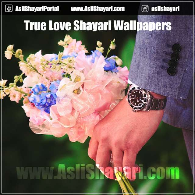 true love shayari wallpapers