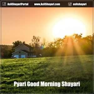 pyari good morning shayari