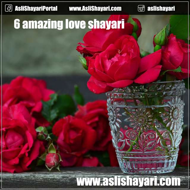 6 amazing love shayari